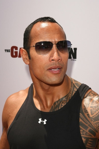 wwe the rock. WWE The Rock