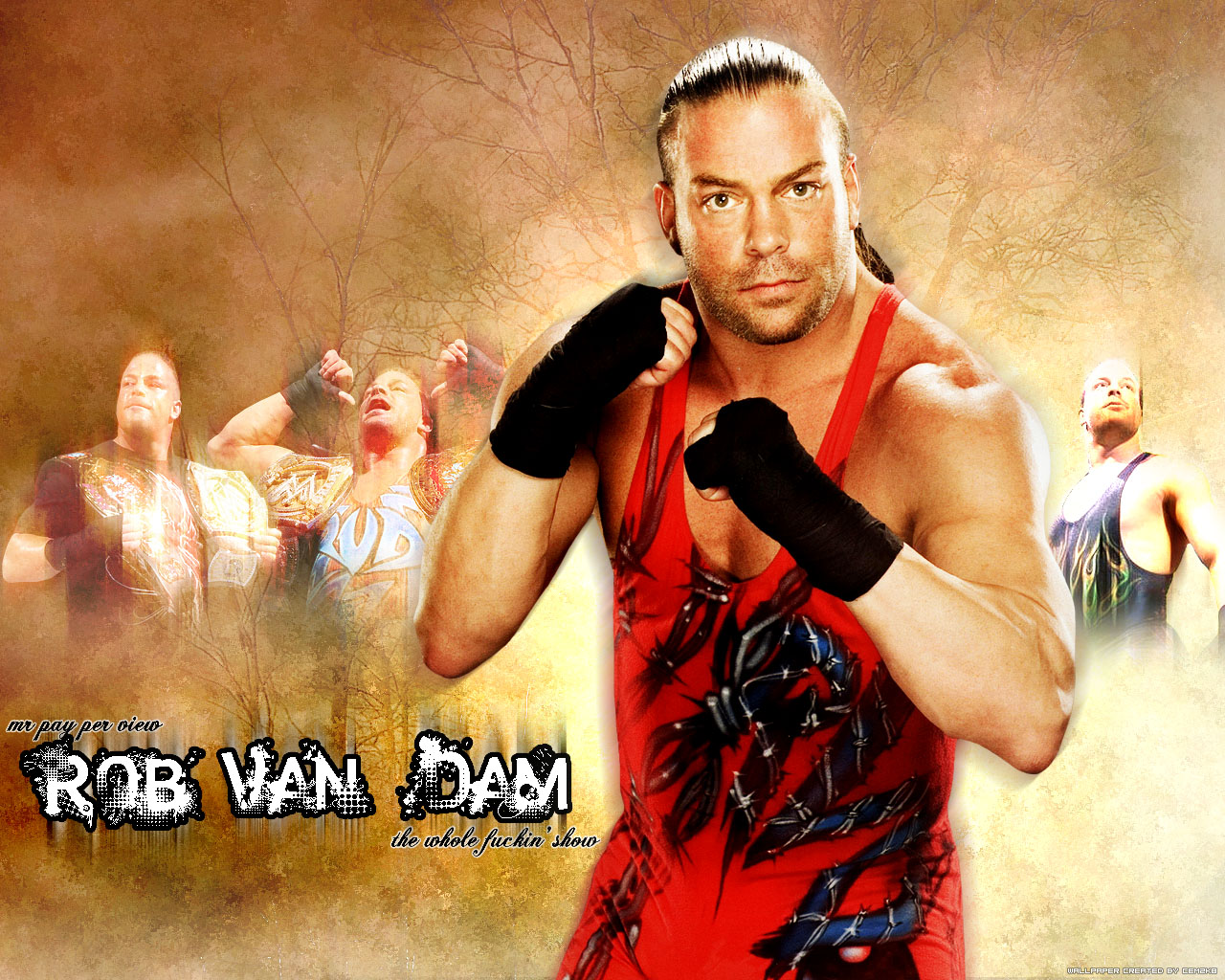 Wwe raw new wallpapers wrestling raw smack down - Wwe rvd images ...